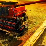 Avanço da colheita ainda pode elevar os preços do Frete